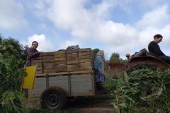 Famille GAGNE : nos voisins arboriculteurs