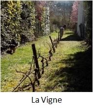 Bouton vers La Vigne